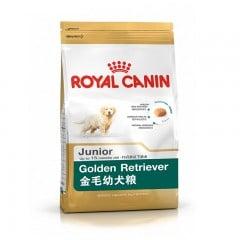 thuc-an-cho-cho-golden-con-royal-canin-golden-retriever-29