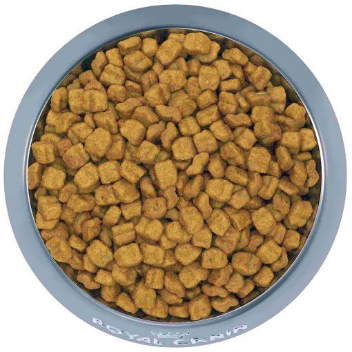 Thức ăn cho chó Royal Canin Bulldog Puppy