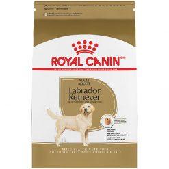 Thức ăn cho chó trưởng thành Royal Canin Labrador Retriever Adult