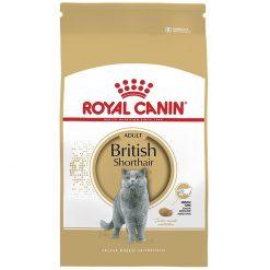 Thức ăn cho mèo Anh lông ngắn trưởng thành Royal Canin British Shorthair Adult